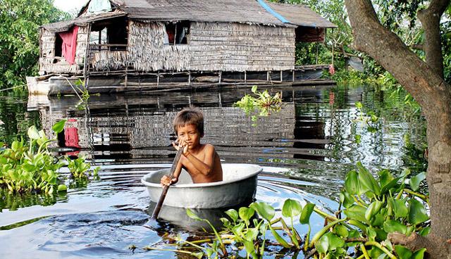 20110831-biodiversidade.jpg