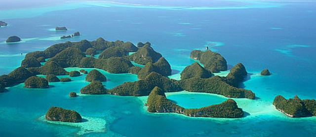 20110831-biodiversityislandpolynesia.jpg