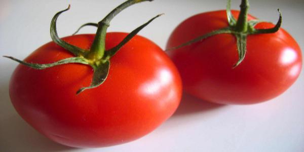 20110915-tomate111.jpg