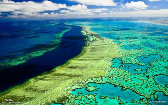 20111020-great-barrier-reef.jpg